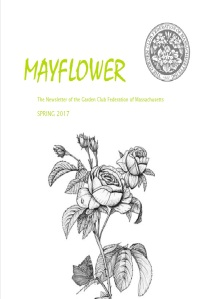 mayflower-spring-2017
